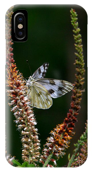 Checkered White On An Indigo IPhone Case