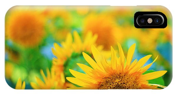 Cheerful And Happy Yellow Sunflower Field In Summer IPhone Case