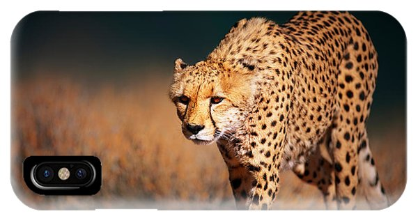 Cheetah iPhone Case - Cheetah Approaching From The Front by Johan Swanepoel