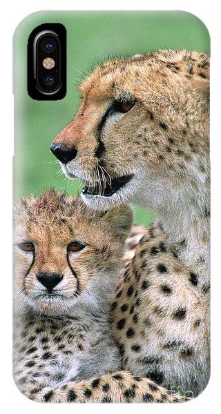 Mp iPhone Case - Cheetah Mother And Cub by Yva Momatiuk John Eastcott