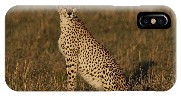 East Africa iPhone Case - Cheetah On Savanna Masai Mara Kenya by Hiroya Minakuchi