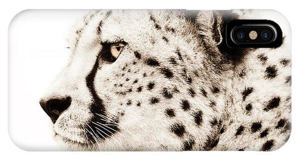 Cheetah iPhone Case - Cheetah by Jacky Gerritsen