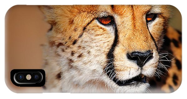 Close-up iPhone Case - Cheetah Portrait by Johan Swanepoel