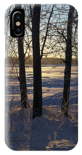 Chena River Trees IPhone Case