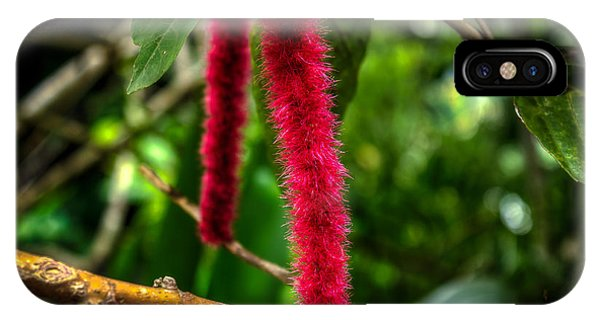 Chenille   Red Hot Cat Tail Phone Case by William Reek