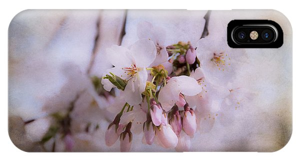 Cherry Blossom Dreams IPhone Case