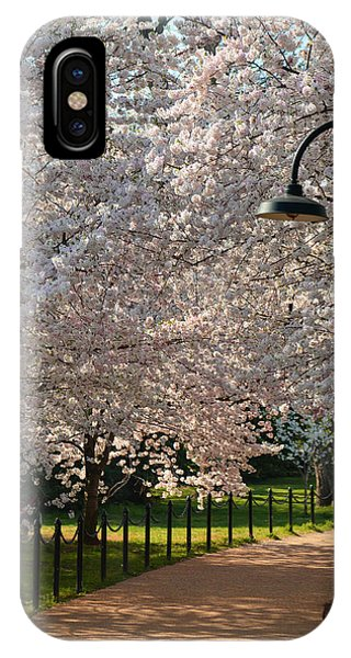 Cherry Blossoms 2013 - 060 IPhone Case