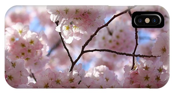 Cherry Blossoms And Blue Sky-1 IPhone Case