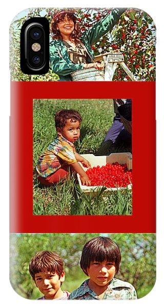 Cherry Harvest Of 1982 IPhone Case