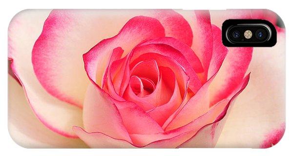 Cherry Parfait Rose IPhone Case