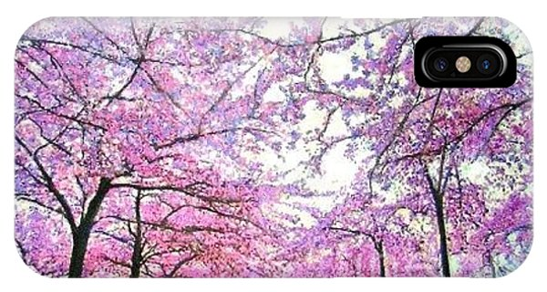 Cherry Trees In Washington Dc IPhone Case