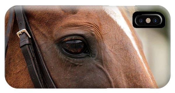 Chestnut Horse Eye IPhone Case