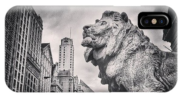 Architecture iPhone Case - Art Institute Of Chicago Lion Picture by Paul Velgos