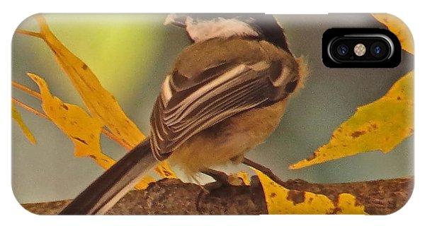 Chickadee 105 Phone Case by Patsy Pratt