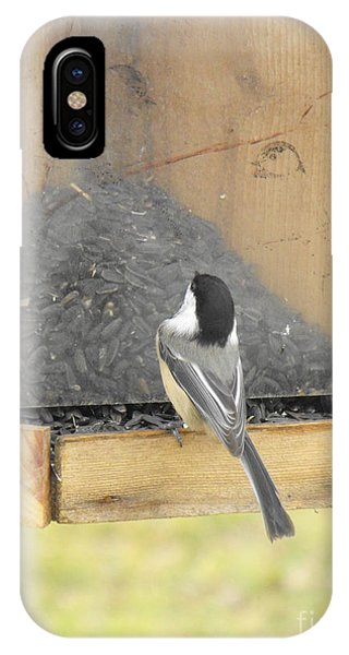Chickadee Eating Lunch IPhone Case