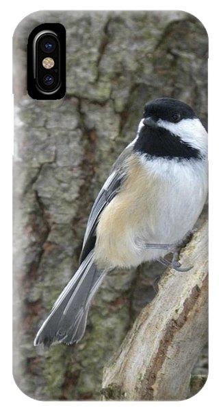 Chickadee Ready IPhone Case
