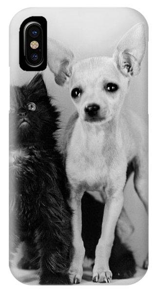 Chihuahua iPhone Case - Chihuahua Has Kitten Sidekick by Underwood Archives