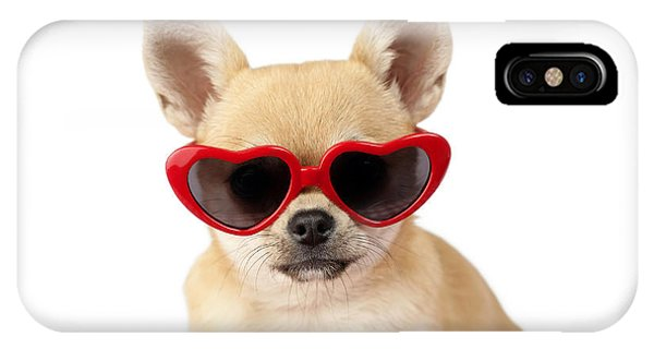 Sitting iPhone Case - Chihuahua In Heart Sunglasses Dp813 by Greg Cuddiford