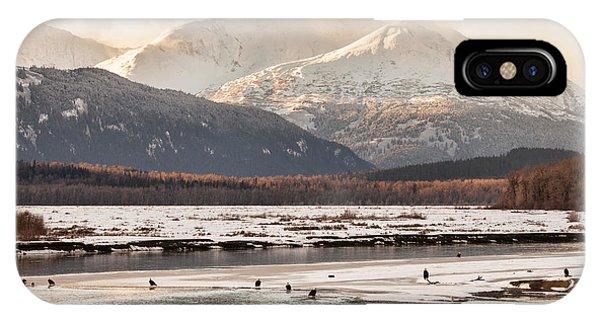 Chilkat Bald Eagle Preserve In Winter IPhone Case