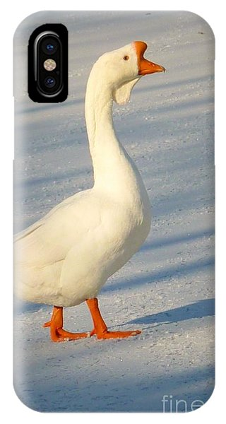 Chinese Goose Winter IPhone Case