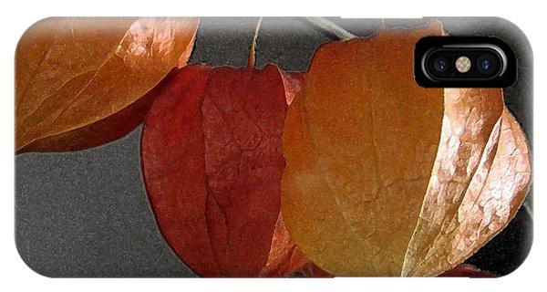 Chinese Lantern Plant At  Midnight Phone Case by Patricia E Sundik
