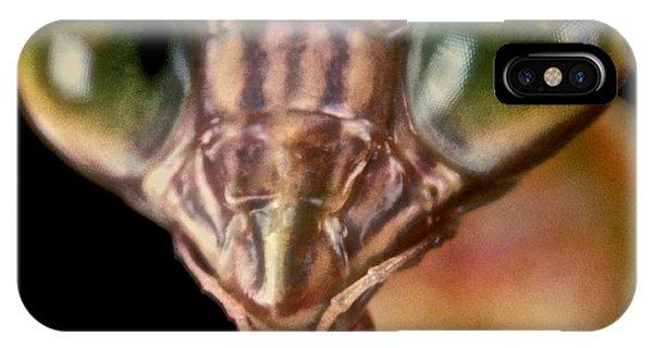 Chinese Praying Mantis Macro Closeup #6 Phone Case by Leslie Crotty