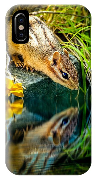 IPhone Case featuring the photograph Chipmunk Reflection by Bob Orsillo