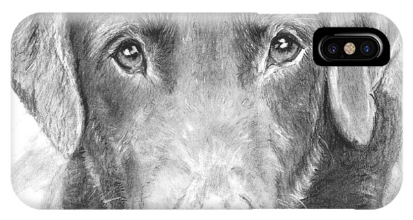 Chocolate Lab Sketched In Charcoal IPhone Case