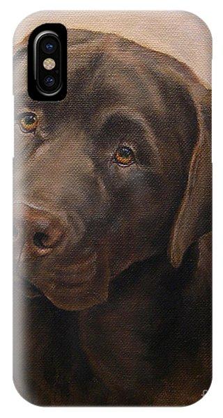 Chocolate Labrador Retriever Portrait IPhone Case