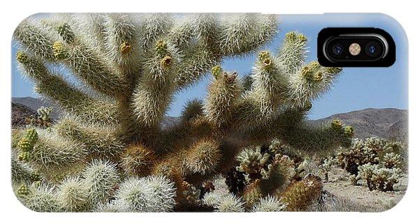Cholla Cactus Phone Case by Deborah Smolinske