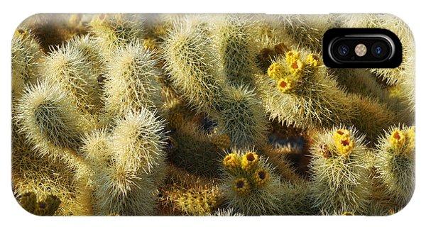 Cylindropuntia Bigelovii iPhone Case - Cholla Cactus Garden Mirage by Kyle Hanson