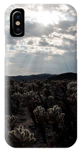 Cylindropuntia Bigelovii iPhone Case - Cholla Teddy Bear Cactus Garden Sunset by Kyle Hanson