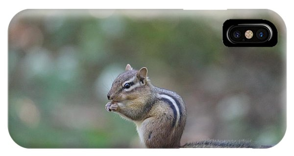 Chowing Chipmunk IPhone Case