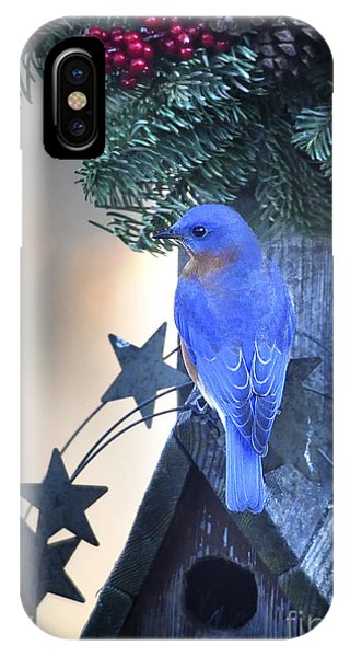 Christmas Bluebird IPhone Case
