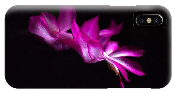 Christmas Cactus Blossom IPhone Case