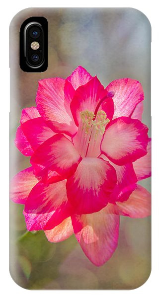 Christmas Cactus Bokeh IPhone Case