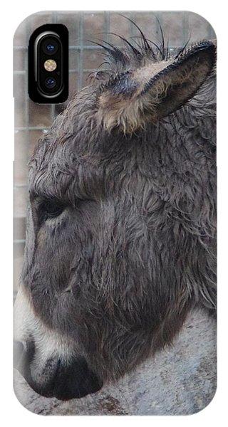 Christmas Donkey IPhone Case