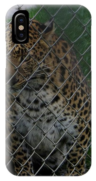 Christmas Leopard II IPhone Case