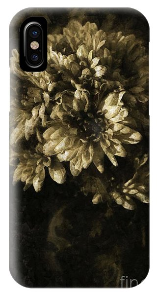 Chrysanthemum IPhone Case