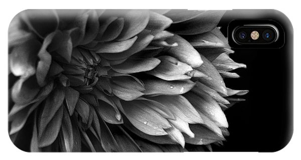 Chrysanthemum In Black And White IPhone Case