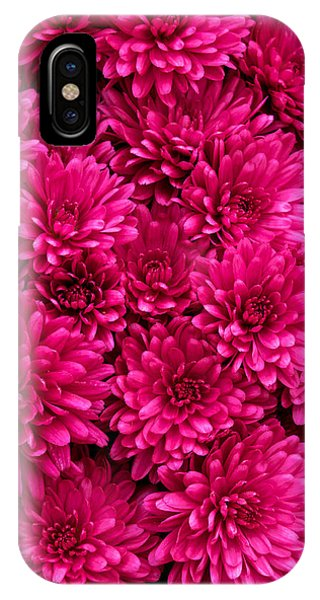 Chrysantheumums IPhone Case