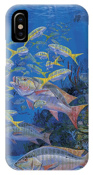 Bahamas iPhone Case - Chum Line Re0013 by Carey Chen