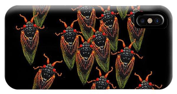 Cicadas IPhone Case