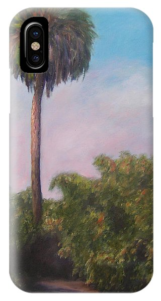 Citra Fl Orange Grove IPhone Case