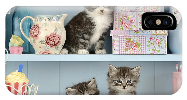 Bunting iPhone Case - Baking Shelf Kittens by Greg Cuddiford