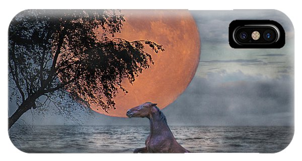 Southwest iPhone Case - Claiming The Moon by Betsy Knapp