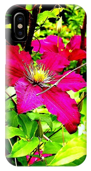 Clematis Phone Case by Dancingfire Brenda Morrell