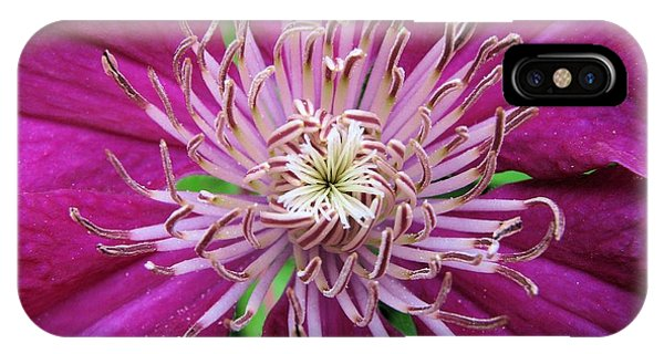Clematis Heart Two IPhone Case
