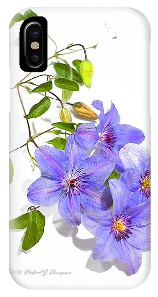 Clematis IPhone Case