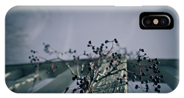 Blue Berry iPhone Case - Cling To You by Shane Holsclaw